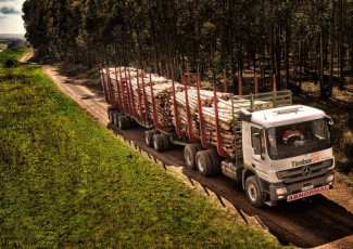 Timber24 takes delivery of new trucks